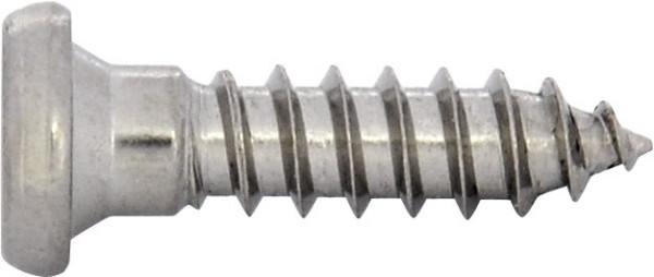 JET Riegelprofilschraube TX15 3,9X15 A2