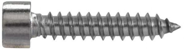 Blechschr. Kopf DIN 912 A2 5,5x65mm